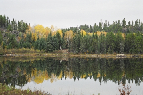 Picture captures the changing colour of the leaves, on a placid Wabaskang Lake.