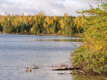 Looks like a great day to get in some fall trout fishing in the Patricia Region.  Care to join us?
