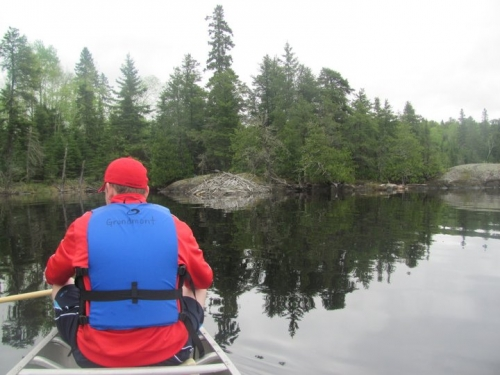 It was a beautiful day to be out canoeing in the Sioux Lookout area.  The first stop was a visit to the beaver lodge.