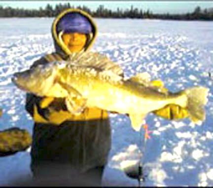 We were told that the photo doesn't do justice to the size of this huge walleye.  A young girl from Dryden proudly shows off her catch from Eagle Lake.