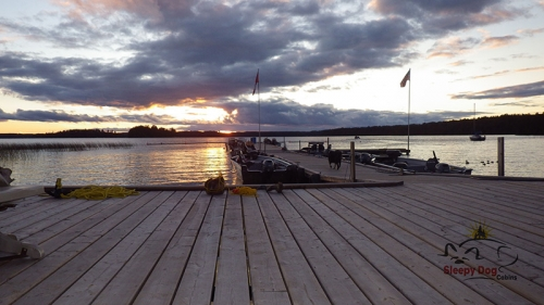 Beautiful shot of Wabaskang Lake. Even Quill can't help but take a stroll on the dock to enjoy the gorgeous view