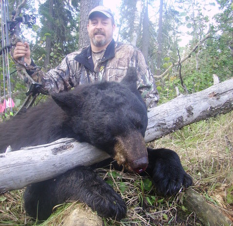 A trophy bear caught by one of the visiting hunters at Indian Point Camp. You can imagine the adrenaline rush you get when you see one of these big guys in the wild!
