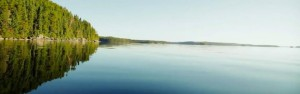 brownsclearwater2