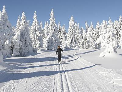 Canadian Winter Activities