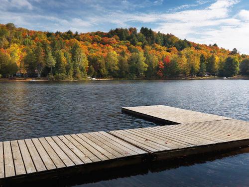 A Walk Through the Seasons in Canada's Heartland