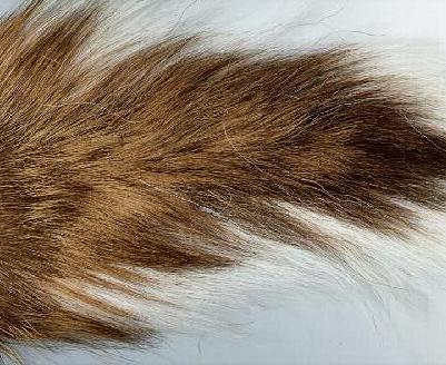 The Original Muskie Bucktail