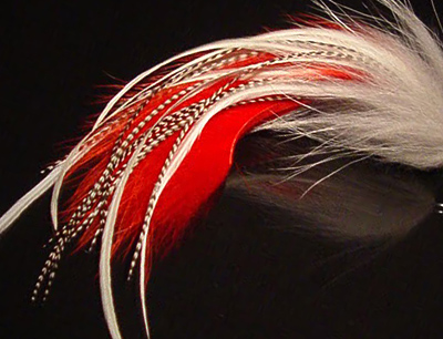 The Invincible Pike Fly