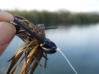 Surface Swimming Jigs For Bass