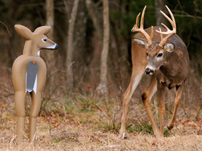 Using Deer Decoys