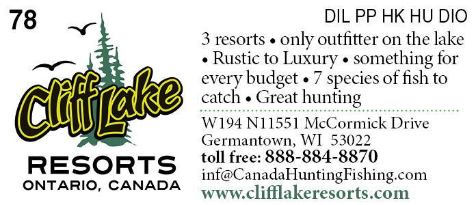 Cliff Lake Resorts