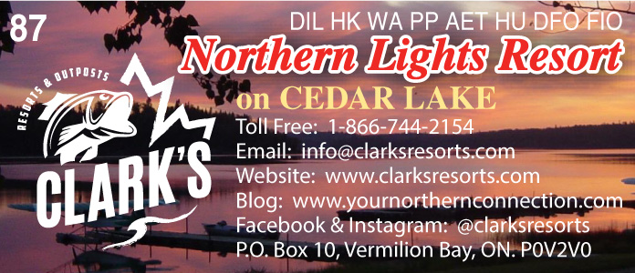 Clark's Northern Lights Resort